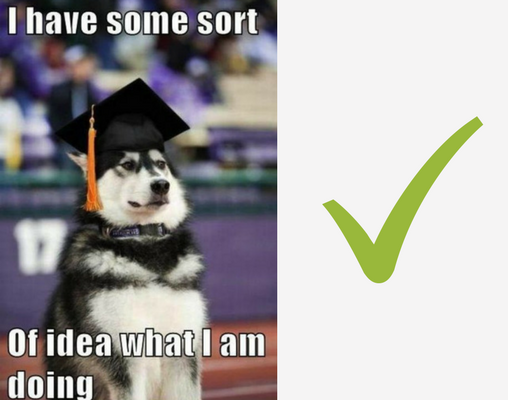 Funny digital marketing meme of a dog graduating.