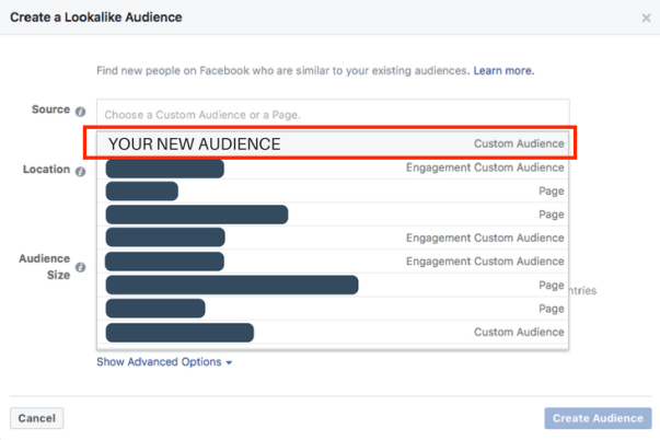 Inserting a custom audience into a Facebook ad set.